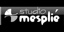 studio mesplié partenaire de la taillade de montségur par kreastyl communication